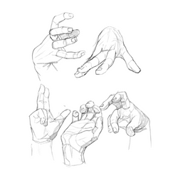 Detailed Anatomy References (Body Part)